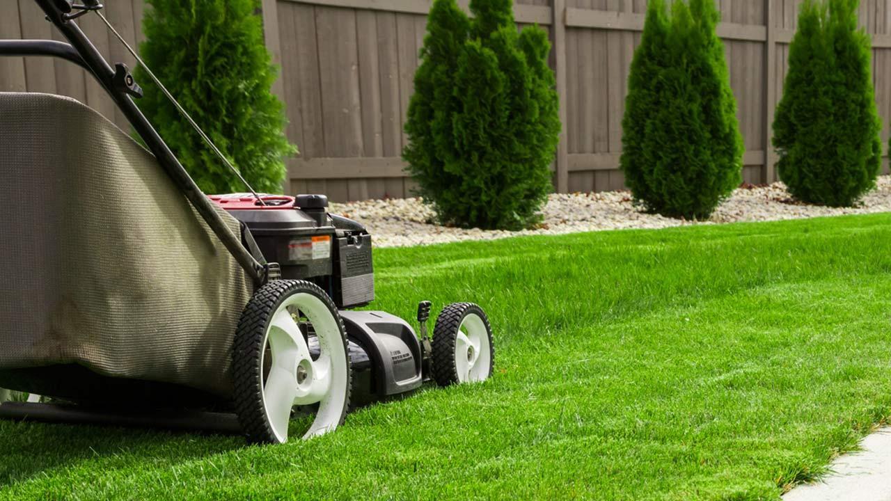 Die richtige Rasenpflege - der Rasen wird gemäht