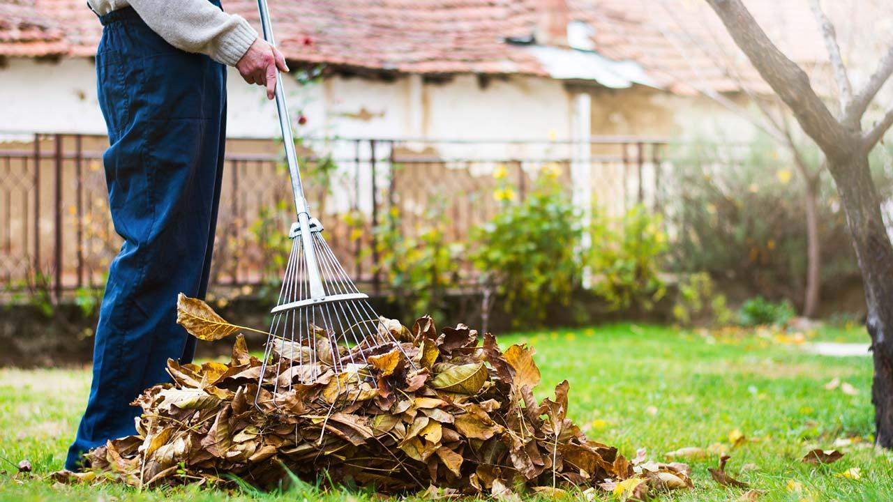 Gartenarbeit im Herbst - Laub rechen