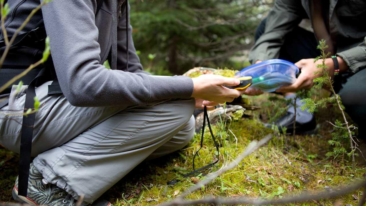 Spielideen für den Herbst, sowohl Indoor als auch Outdoor - GPRS-Schnitzeljagd