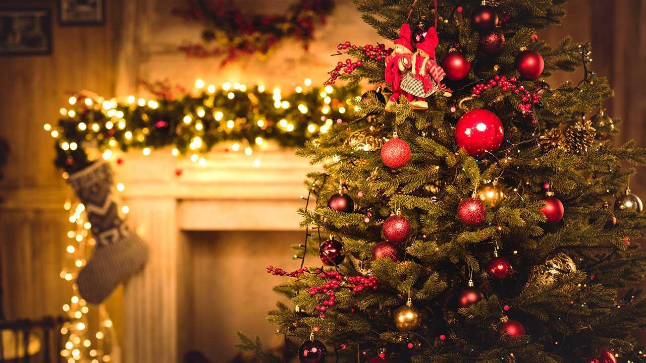 Warum feiern wir Weihnachten - Weihnachtsbaum