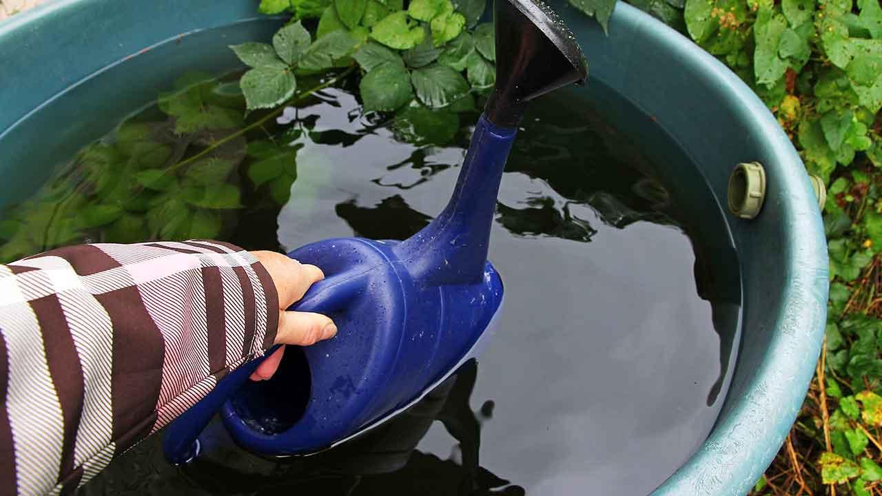 Nachhaltiger Garten - Regentonne mit Wasser