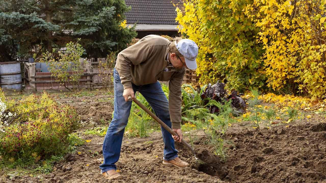 Beete winterfest machen - umgraben