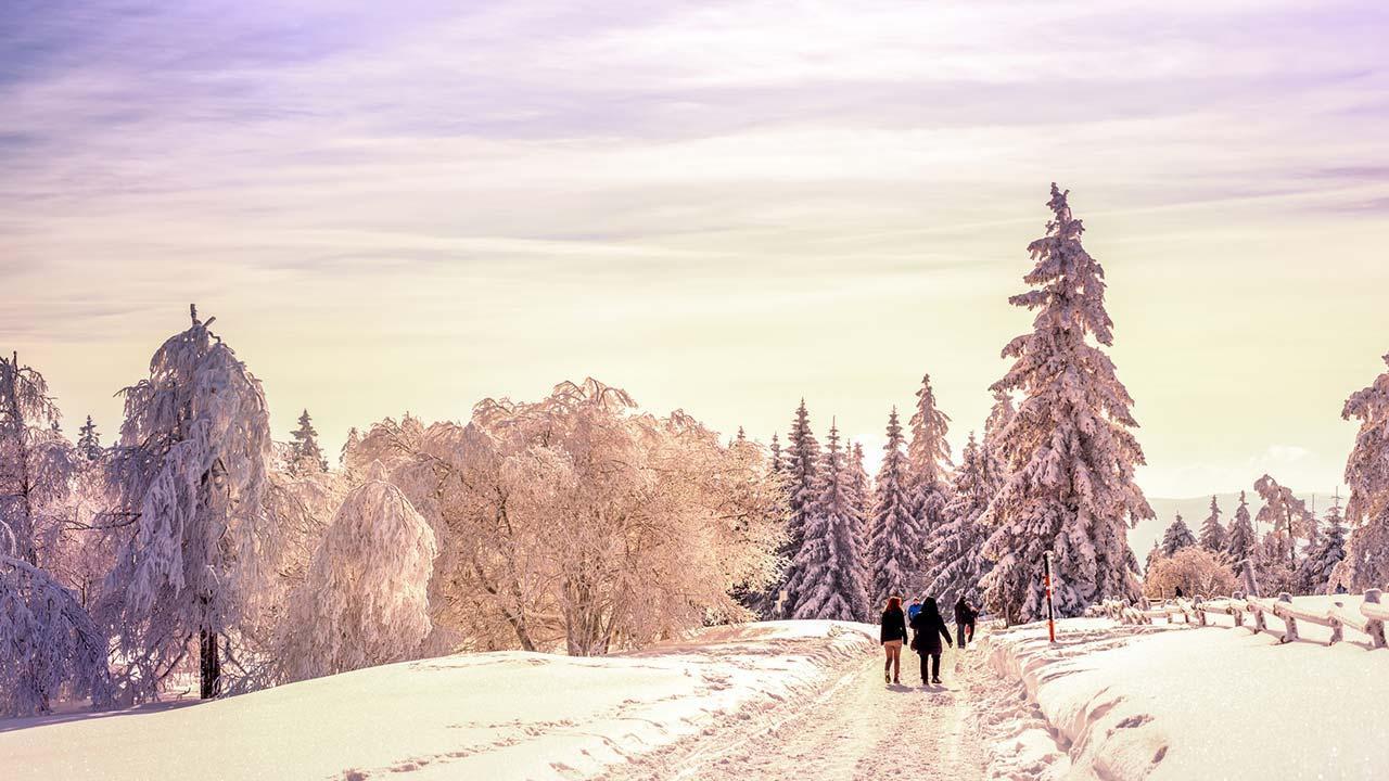 Weihnachtswanderungen im Schwarzwald - Winterwanderweg