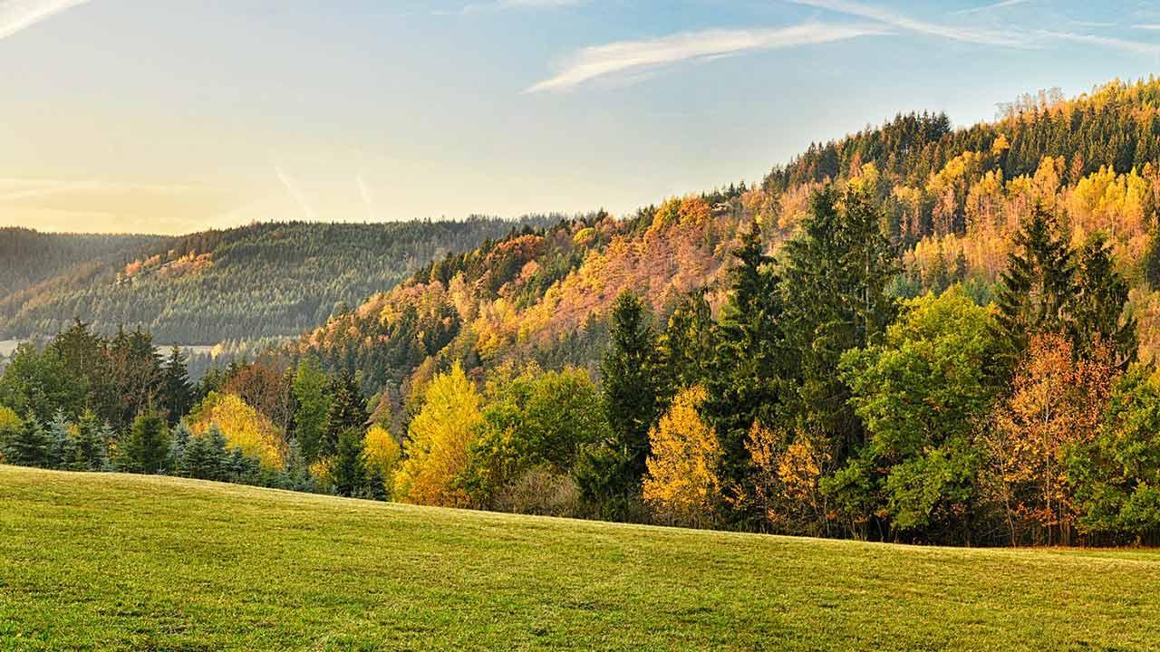 Wandern im Frankenwald: Der Steigla Petersgrat - Herbstlaub