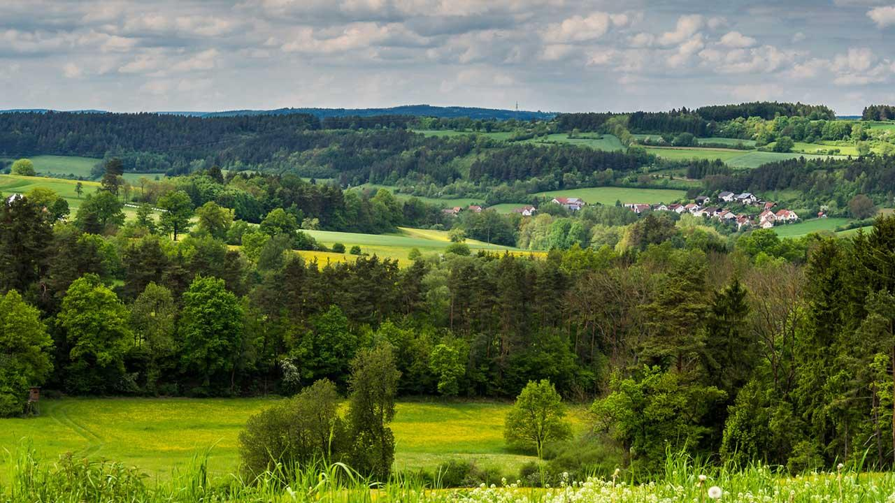 Wandern im Frankenwald: Der Steigla Petersgrat - mit dichter Wolkendecke