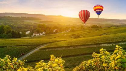 Ballon fahren - Ein Blick über Deutschland - über die Weinberge