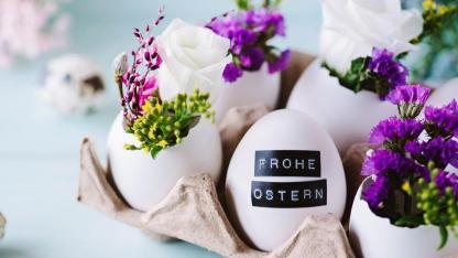 Oster-Deko für Zuhause