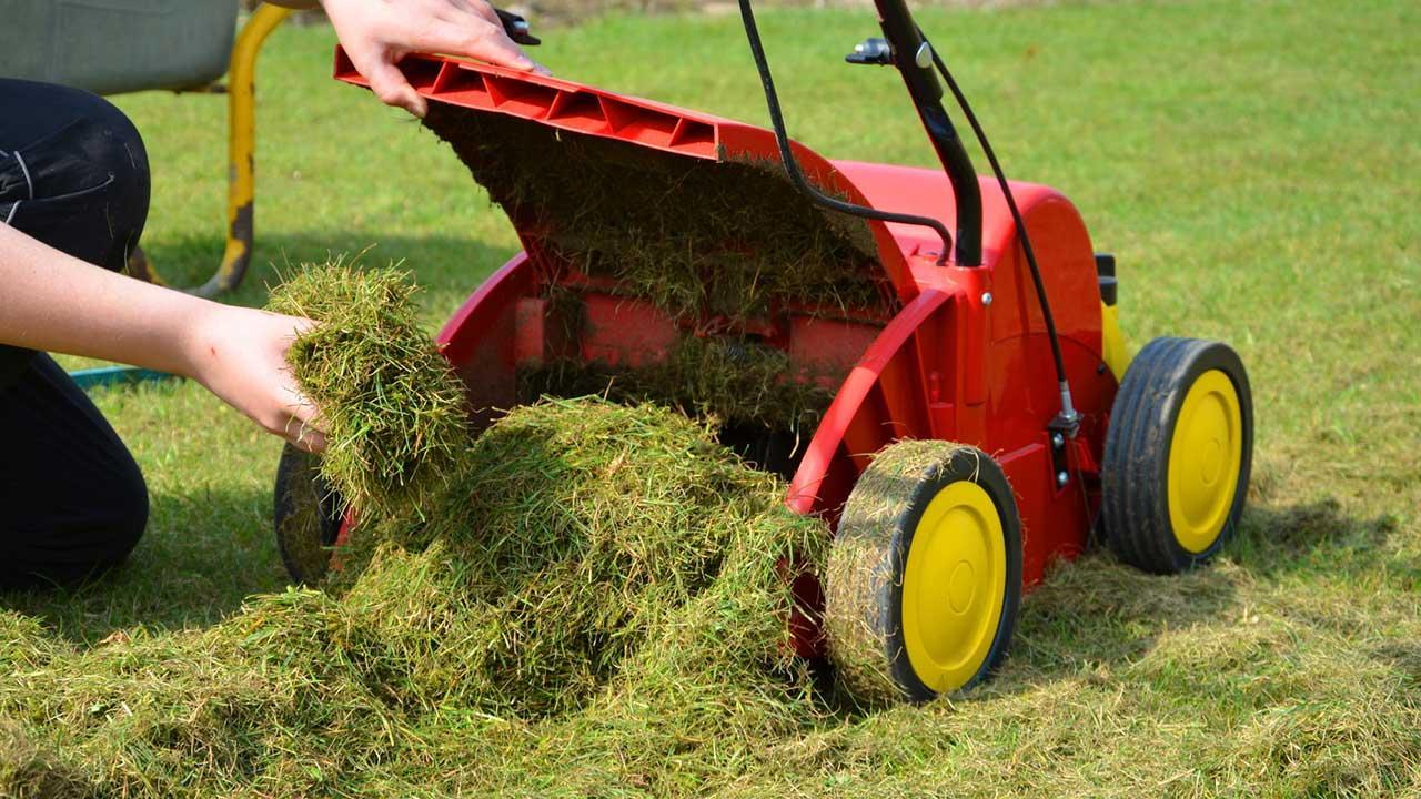 Den Rasen vertikutieren - Rasen ausräumen