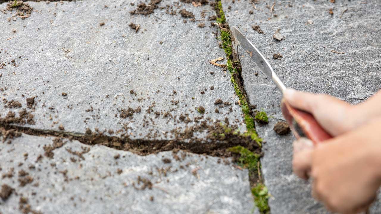 Terrassenfliesen Fugen richtig reinigen - Moos mit Messer