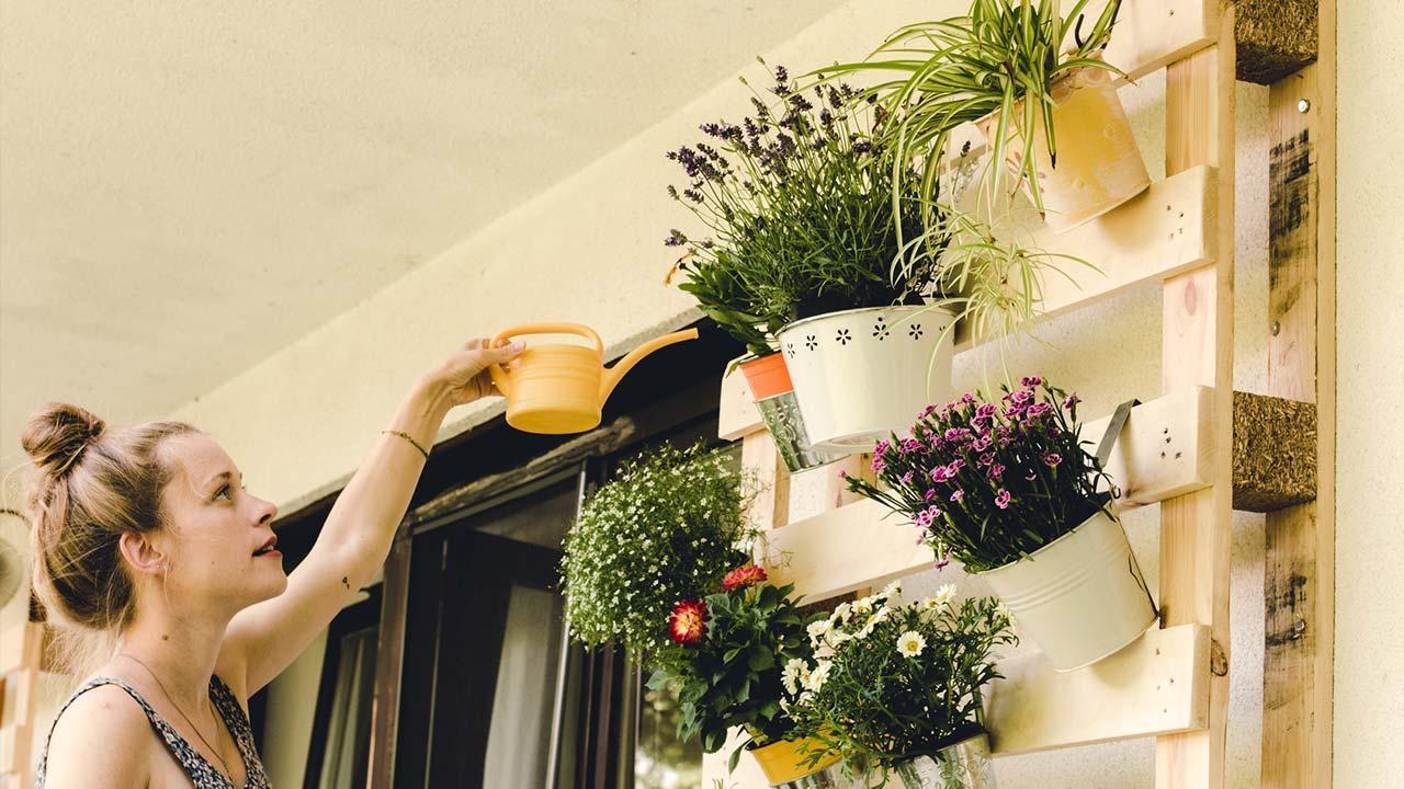 Platzsparende Nutzpflanzen für Ihren Balkon - Paletten Pflanzenständer
