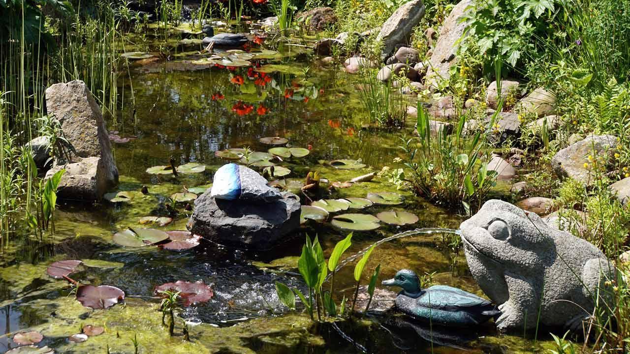 Fließende Gewässer im eigenen Garten / kleiner Teich