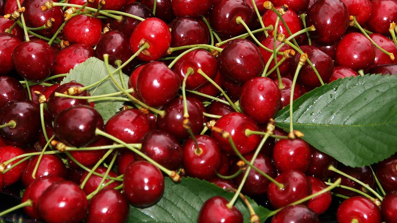Die besten Rezepte für Kirschenmännla / frische Kirschen
