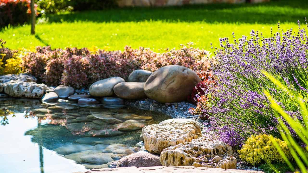 Gewässer im eigenen Garten anlegen / Teich im Garten