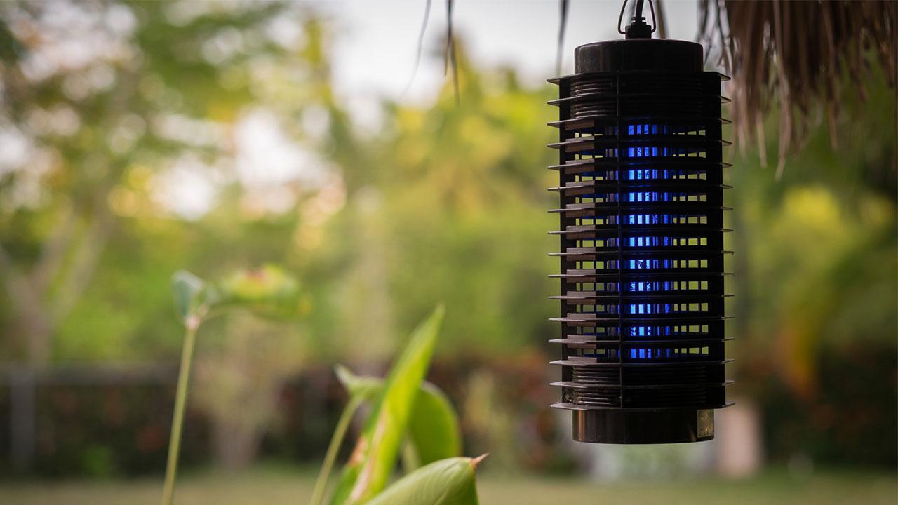 Effektiver Insektenschutz in Haus und Wohnung - elektrischer Insektenschutz