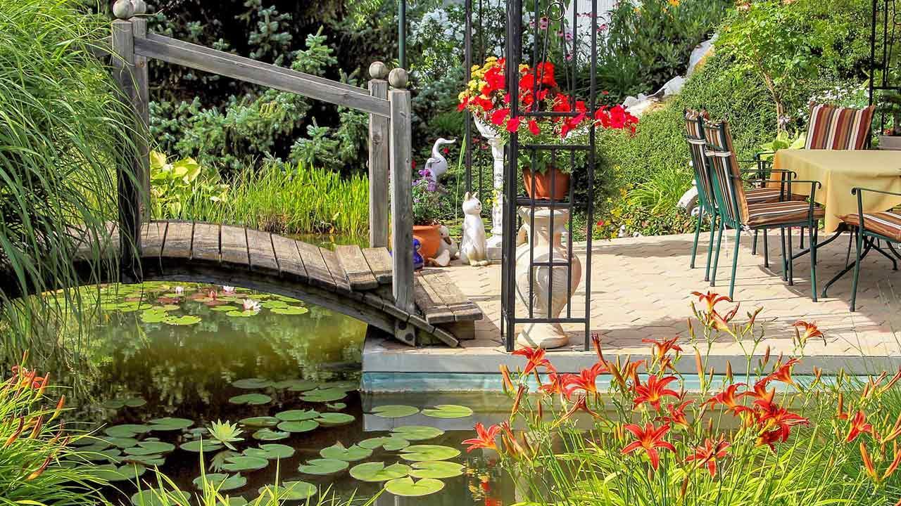 Die schönsten Wasserpflanzen für Ihren Gartenteich / Gartenteich mit Pflanzen