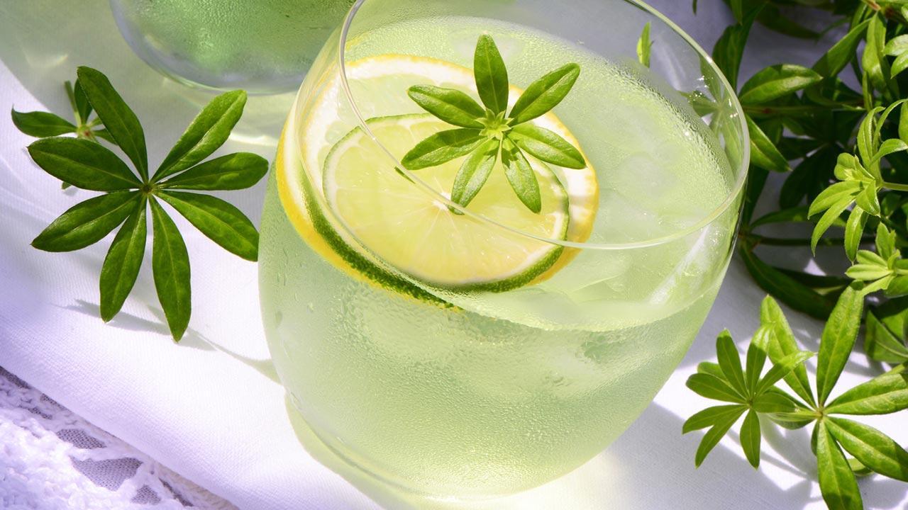 Longdrink Tipp im Juli - Erfrischende Sommerfruchtbowle / Waldmeisterbowle