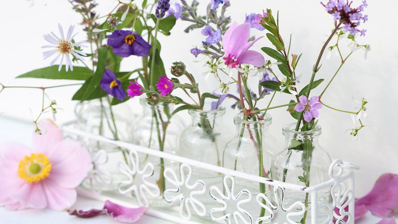 Sommer-Deko-Ideen für Zuhause / Schnittblumen in kleinen Glasflaschen