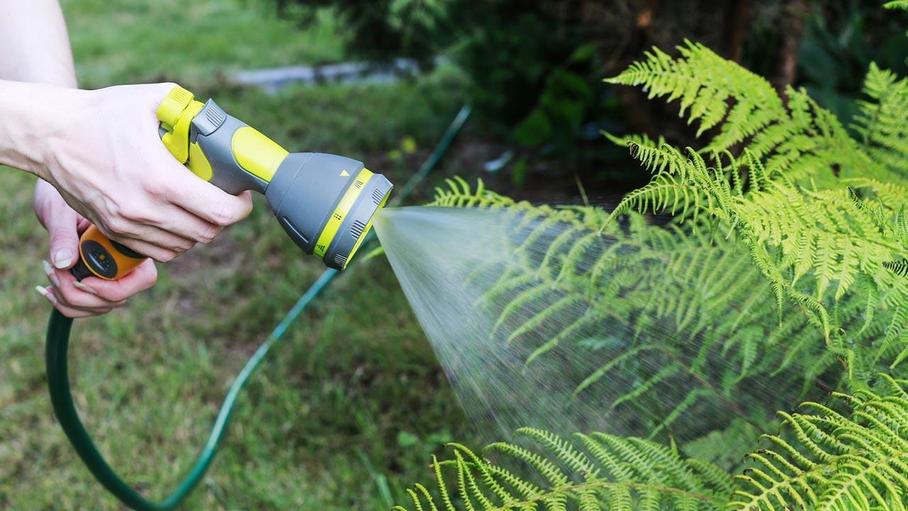 Bewässerungssysteme für den eigenen Garten / Gartenschlauch mit Gießbrause
