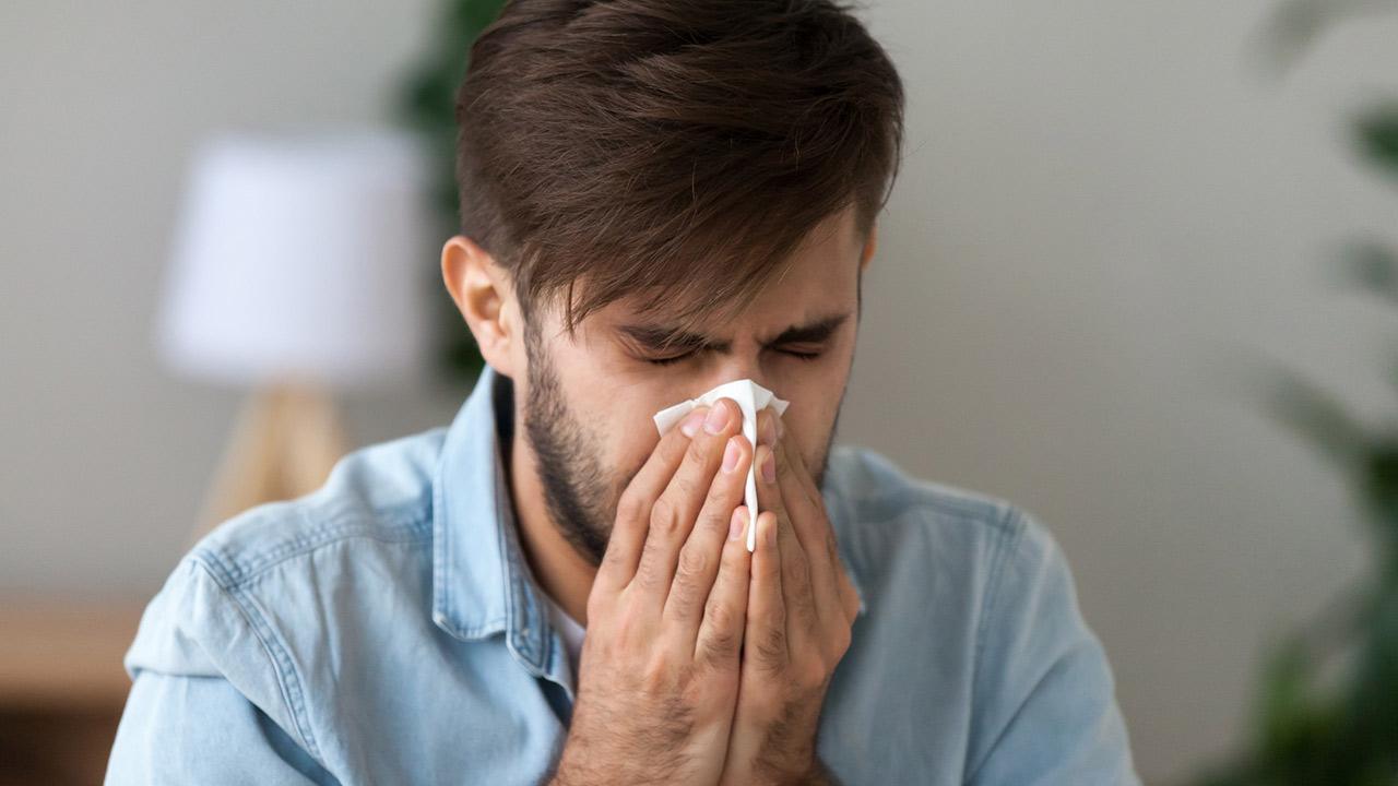 SOS - Heuschnupfen im Sommer / ein Mann niest