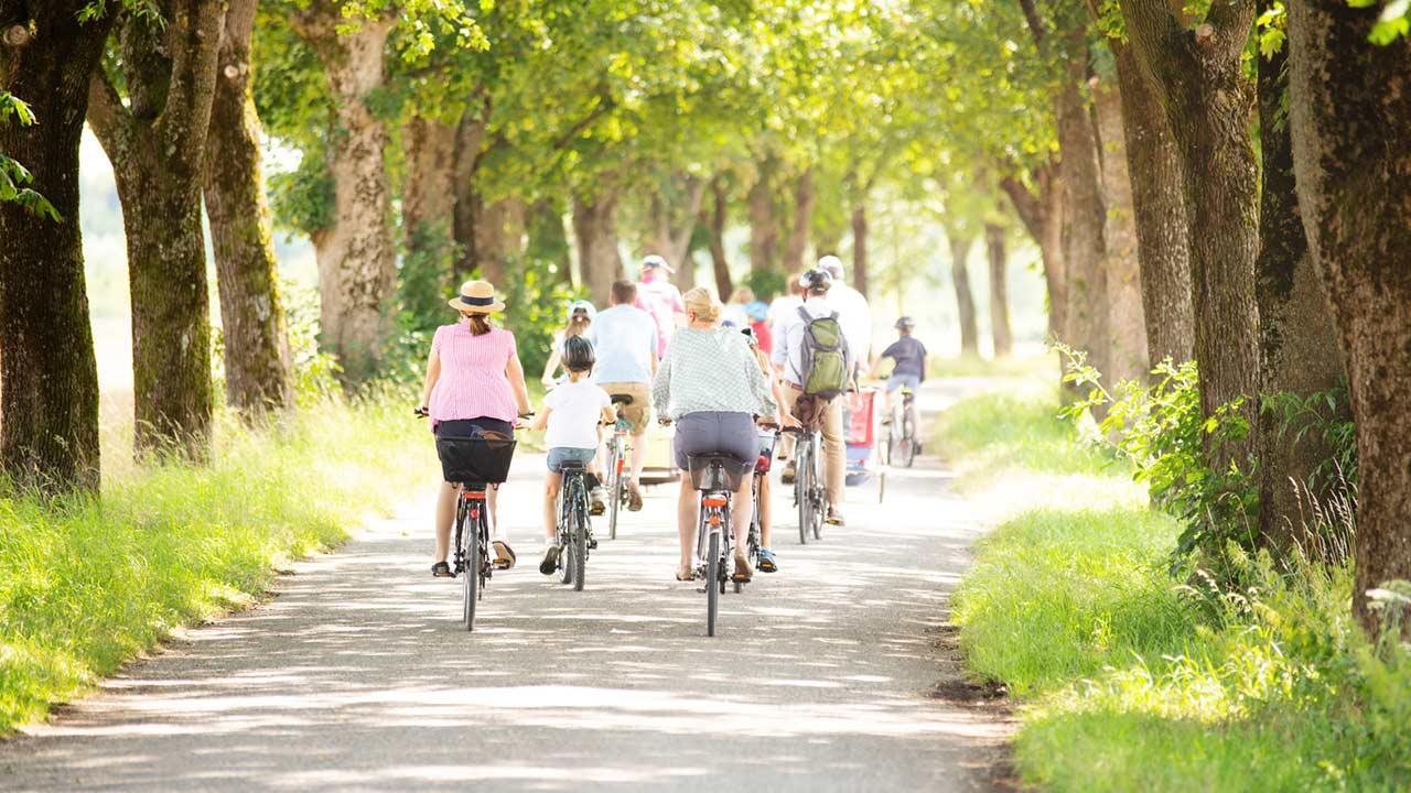 Fahrradtour im Spätsommer von Passau nach Wien / eine große Gruppe von Menschen fahren Rad