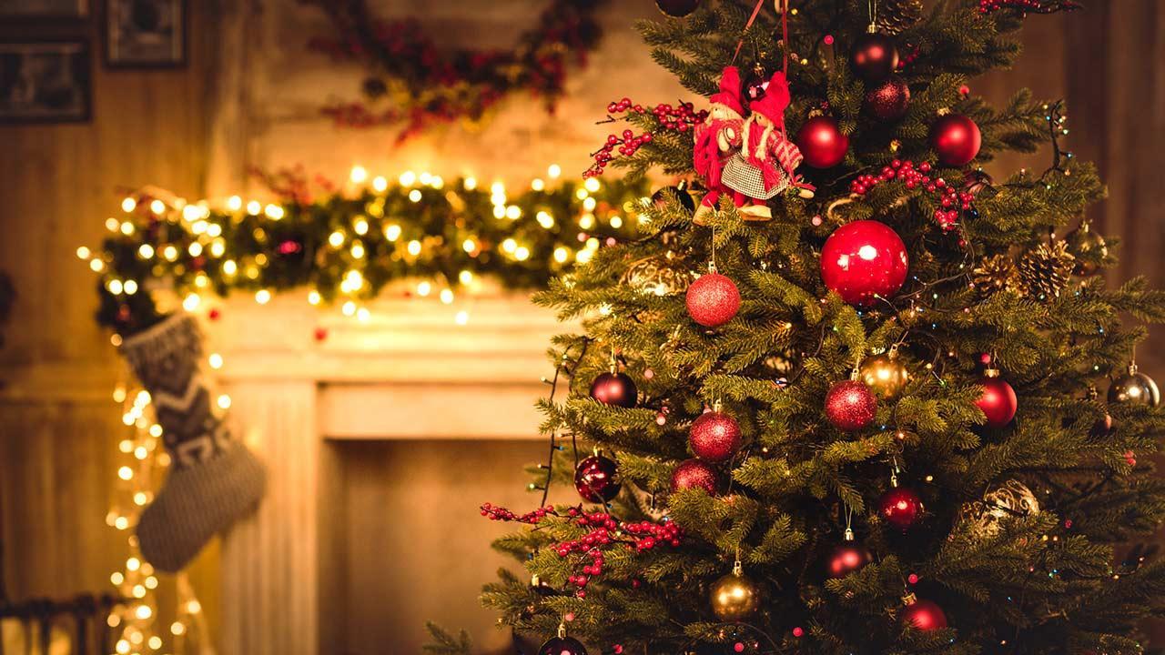 Weihnachtsbäume im Test: Natur oder künstlich ? / ein gemschückter Weihnachtsbaum