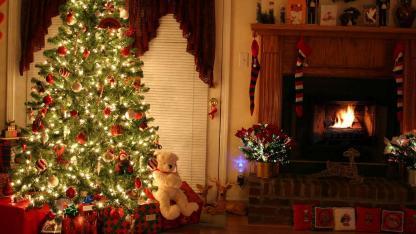 Weihnachtsbäume im Test: Natur oder künstlich ?