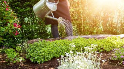 Bewässerungssysteme für Ihren Garten